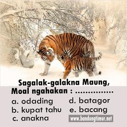 Paribasa Sunda bergambar, Sagalak-galakna maung moal ngahakan anakna